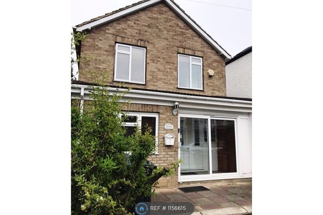 Thumbnail Terraced house to rent in Westbourne Avenue, London