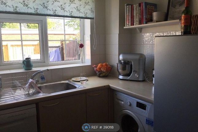 Thumbnail Terraced house to rent in Broadmead, Chester