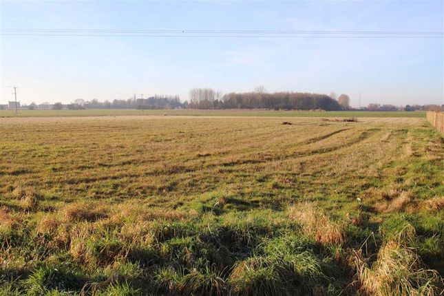 Land for sale in Washdyke Lane, Boston, Lincolnshire
