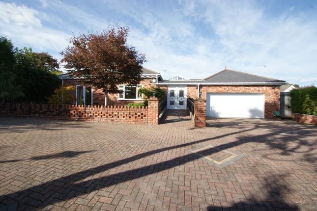 Thumbnail Detached bungalow for sale in Jacks Lane, Torquay
