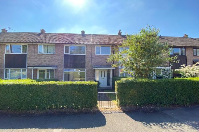 3 bed terraced house to rent in Grandison Rise, Hereford HR1