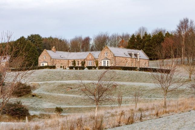 Thumbnail Detached house to rent in Thistleycrook Steading, Torphins, Banchory, Aberdeenshire