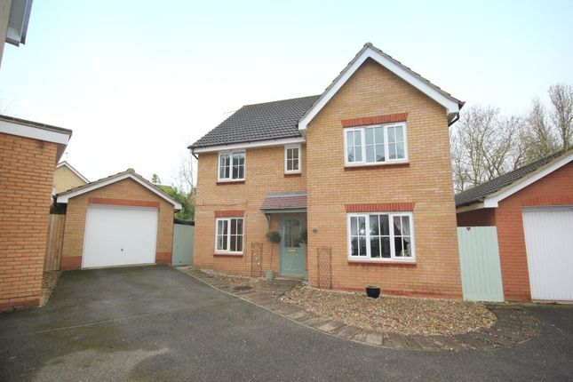Thumbnail Detached house for sale in Joyce Way, Dussindale, Norwich