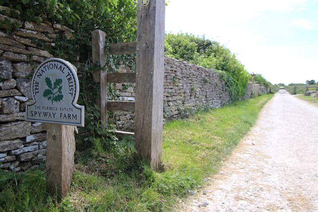 Nearby Walks of Durnford Drove, Langton Matravers, Swanage BH19