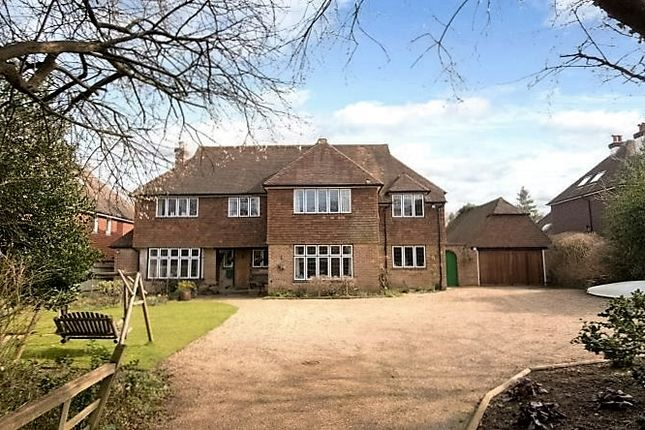 Thumbnail Detached house to rent in One Tree Hill Road, Guildford