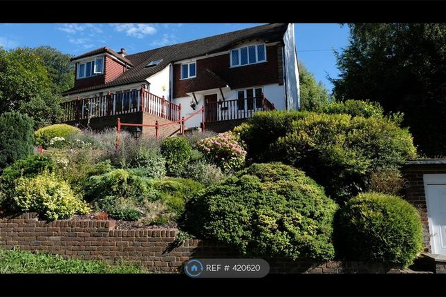 Thumbnail Detached house to rent in Loxford Road, Caterham