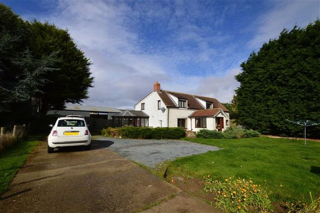 Thumbnail Detached house to rent in Atwick Road, Hornsea, East Yorkshire