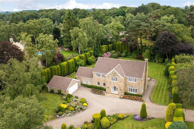 Thumbnail Detached house for sale in Bracken Park, Scarcroft, Leeds