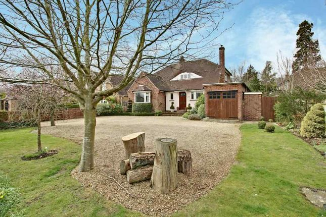 Thumbnail Detached house for sale in Cliddesden Road, Basingstoke