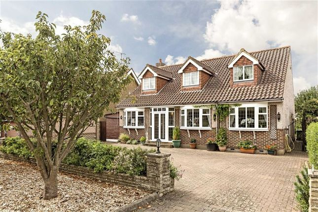 Thumbnail Detached house for sale in The Avenue, Wraysbury, Staines