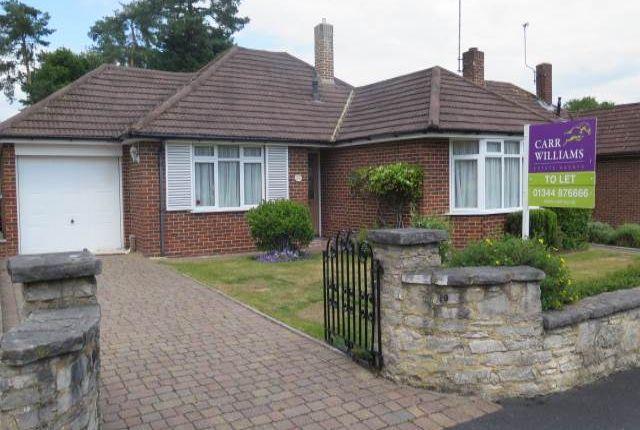 Thumbnail Bungalow to rent in Blackmoor Wood, Ascot, Berkshire