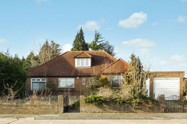 Thumbnail Detached bungalow for sale in Orchard Drive, Horsell, Woking