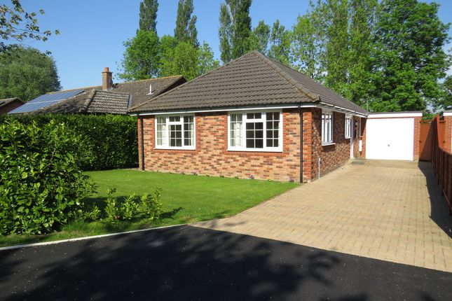 Thumbnail Detached bungalow for sale in Common Road, Bressingham, Diss