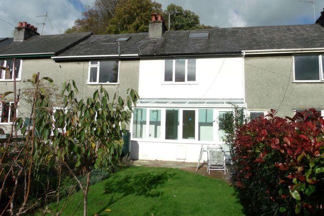 Thumbnail Terraced house to rent in Sunshine Terrace, Tavistock