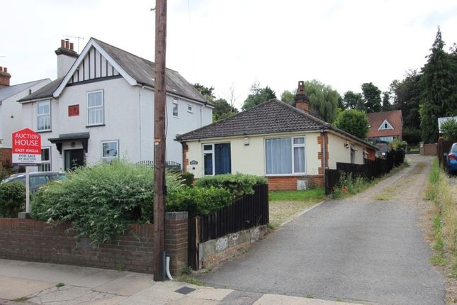 3 bed detached bungalow for sale in 11 Gippeswyk Avenue, Ipswich, Suffolk IP2