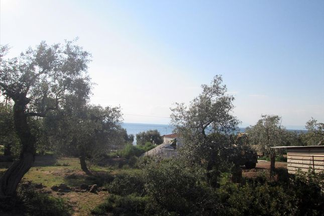 Land for sale in Kallirachi, Kavala, Gr