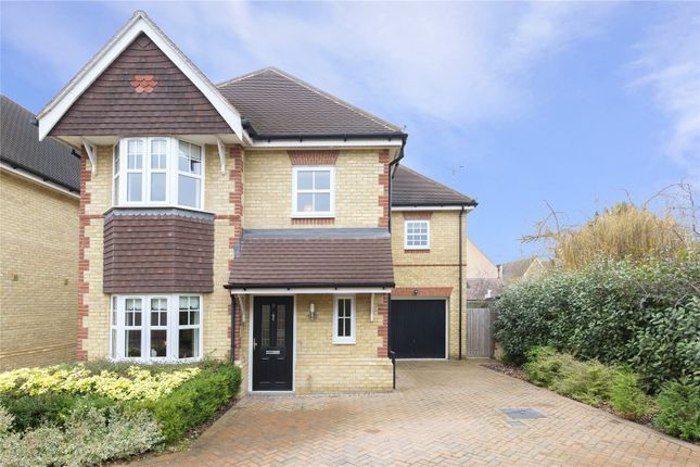 Thumbnail Link-detached house for sale in Nancy Edwards Place, Chelmsford, Essex