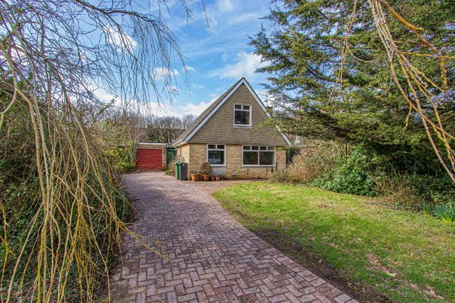 Thumbnail Detached bungalow for sale in Cherry Tree Close, Lisvane, Cardiff