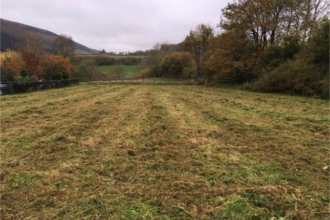 Thumbnail Land for sale in Glyn Rhosyn, Caio, Llanwrda