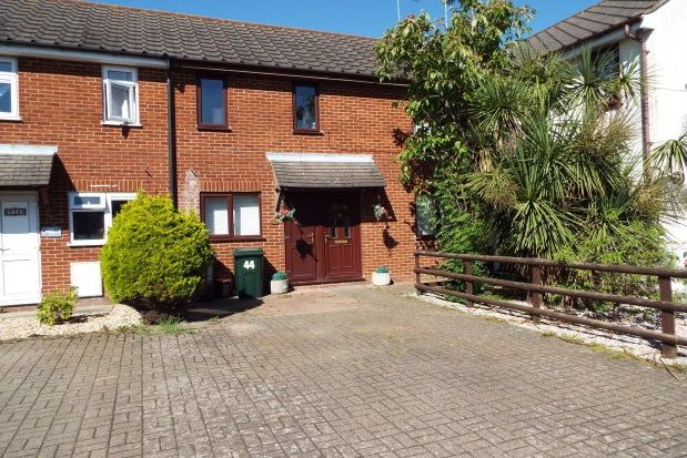 Thumbnail Property to rent in Langholm Road, Ashford