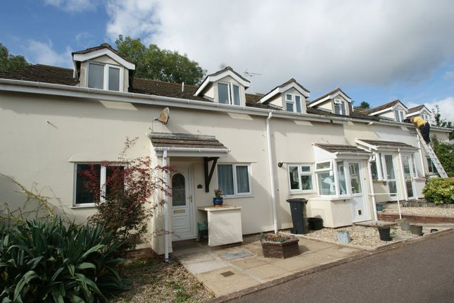 Thumbnail Terraced house for sale in Venford Close, Paignton