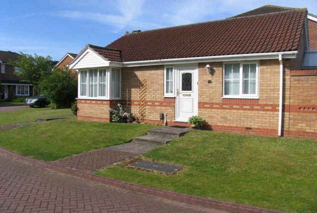 Thumbnail Detached bungalow to rent in St. Albans Close, Bracebridge Heath, Lincoln