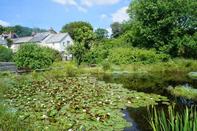 Thumbnail Terraced house for sale in Polscoe, Lostwithiel