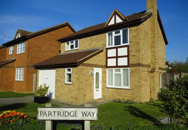 Thumbnail Detached house to rent in Partridge Way, Aylesbury