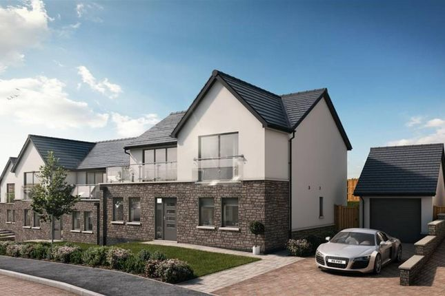 Thumbnail Detached house for sale in Sand Banks, Broad Haven, Pembrokshire