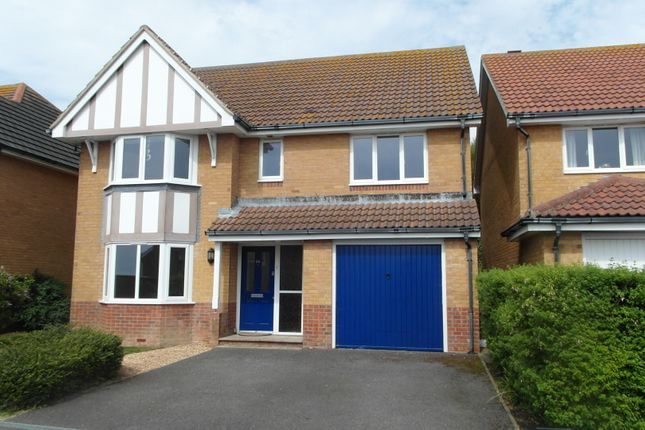 Thumbnail Detached house to rent in Haven Way, Newhaven