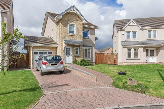 Thumbnail Detached house for sale in Swan Avenue, Montrose