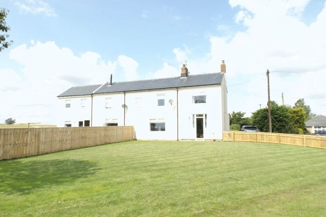Thumbnail Semi-detached house to rent in Stannington, Morpeth