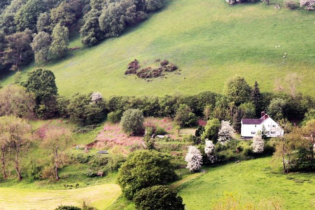 Thumbnail Detached house for sale in Llanfihangel, Llanfyllin