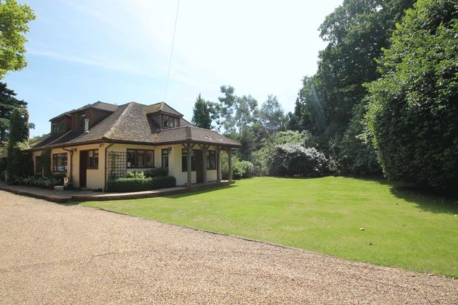 Thumbnail Detached house to rent in Rad Lane, Peaslake, Guildford