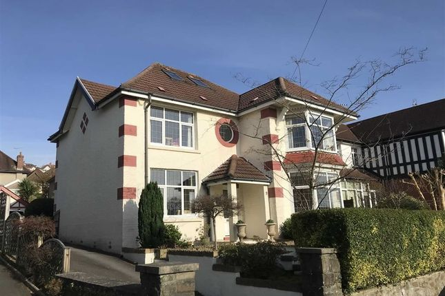 Thumbnail Detached house for sale in Myrtle Grove, Swansea