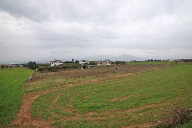 Thumbnail Land for sale in Trilofo, Thessaloniki, Gr