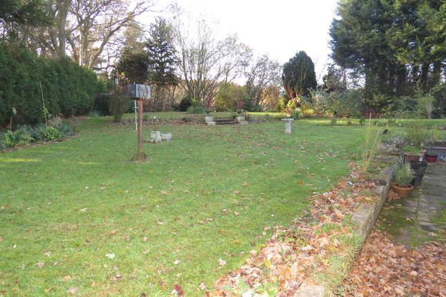 Garden of Muirfield Avenue, Doncaster DN4