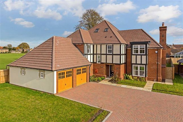 Thumbnail Detached house for sale in Wrestlers Grove, Langford, Bedfordshire