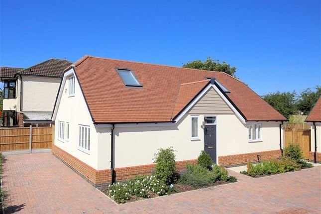 Thumbnail Property for sale in Mallards Place, Hastingwood, Essex