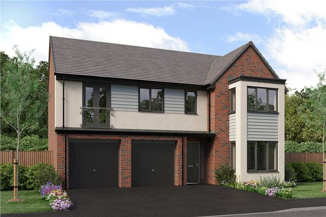 "Thumbnail Detached house for sale in ""The Buttermere"" at Bristlecone, Sunderland"