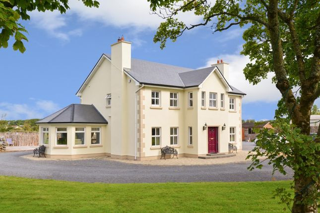 Thumbnail Detached house for sale in Tonroe, Ardrahan, Galway County, Connacht, Ireland