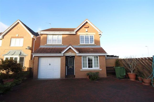 Thumbnail Detached house to rent in Belsay Grove, Bedlington