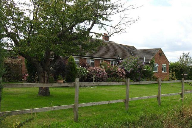 Thumbnail Detached bungalow for sale in Silt Road, Nordelph, Downham Market