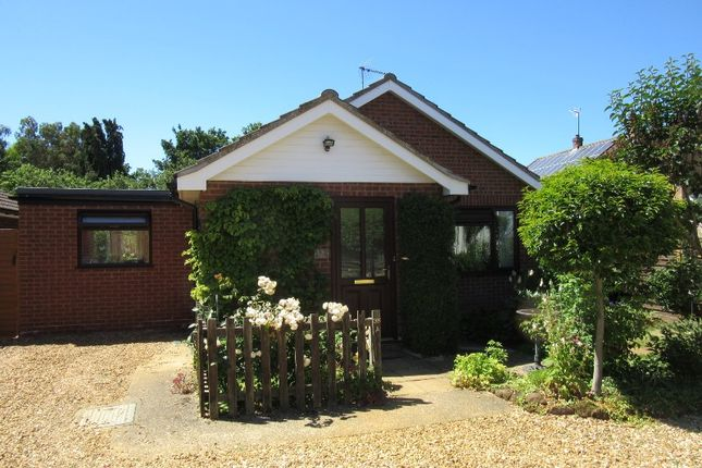 Thumbnail Detached bungalow to rent in Chequers Rd, Grimston