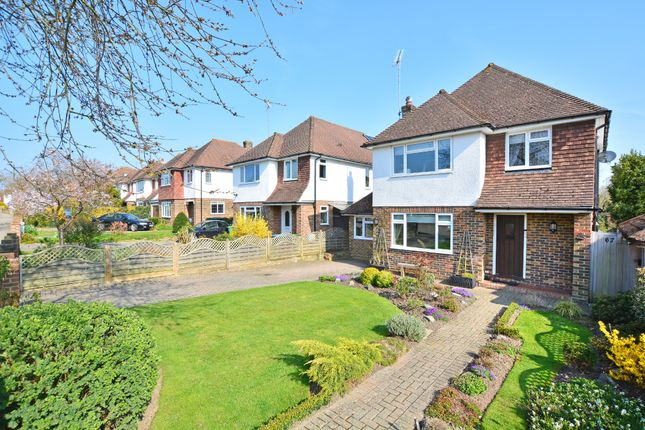 Thumbnail Detached house for sale in Queensway, Horsham