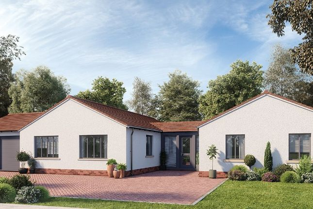 Thumbnail Property for sale in Main Road, Kesgrave, Ipswich