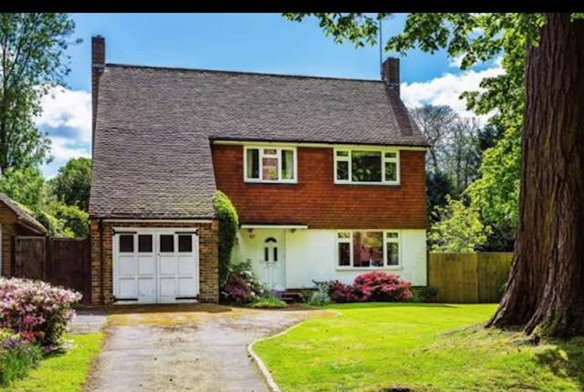 Thumbnail Detached house to rent in Milton Mount Avenue, Crawley
