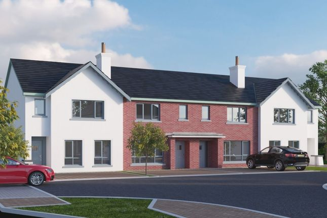Thumbnail Terraced house for sale in Saint Annes Wood, Millisle Road, Donaghadee
