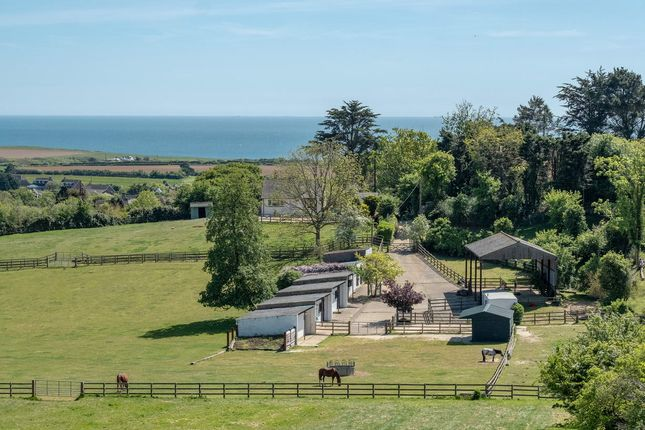 Thumbnail Detached bungalow for sale in Gaggerhill Lane, Brighstone, Newport