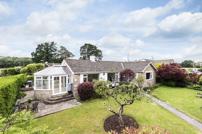 Thumbnail Detached bungalow for sale in Uplands Close, Limpley Stoke, Near Bath
